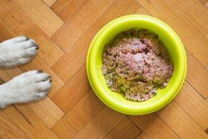 Canned dog food is often a canine favorite