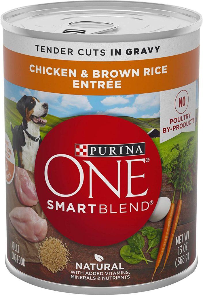 Purina ONE SmartBlend Canned Dog Food