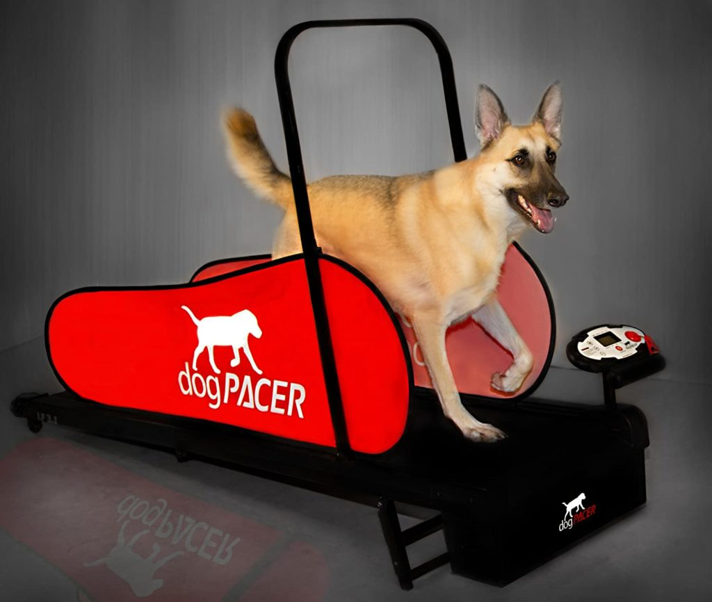DogPACER LF 3.1