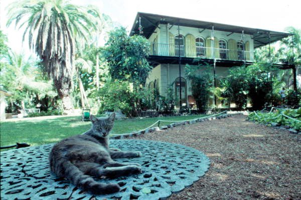 The Hemingway House acts as the residence for polydactyl cats descended from Hemingway's cat Snow White