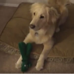 Jolene with her Gumby Toy
